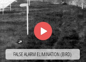 False alarms elimination (bird not detection)
